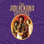 JIMI HENDRIX THE JIMI HENDRIX EXPERIENCE (8LP + 40-PAGE BOOK)