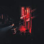 ANDY SHAUF THE NEON SKYLINE  LP