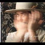 SERENA RYDER THE ART OF FALLING APART (LP)