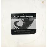 THE FLAMING LIPS RSD21 - THE SOFT BULLETIN COMPANION 2 LP SILVER