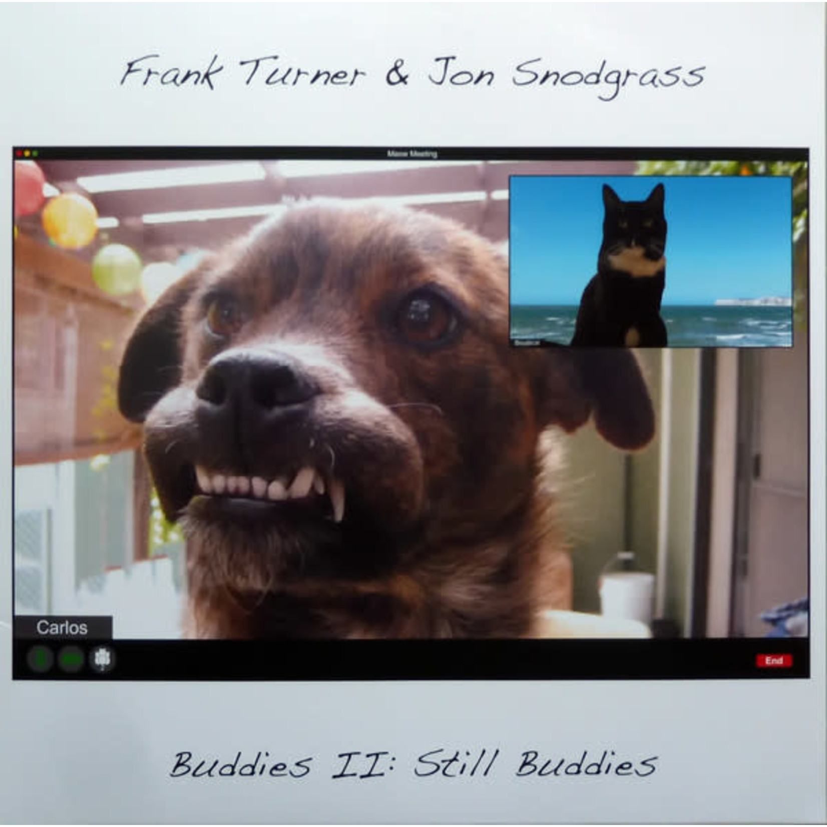 FRANK TURNER BUDDIES II: STILL BUDDIES