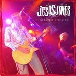 JESUS JONES GREATEST HITS LIVE  LP