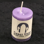 Ghost Hunt Votive Candle
