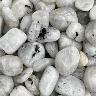 Stone Spinner Rainbow Moonstone