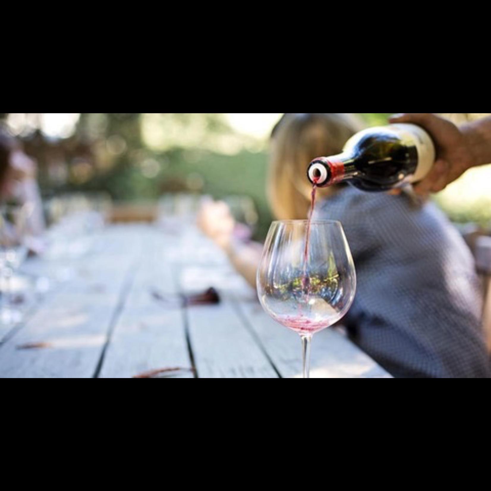 Wine Hidden Gems Fall Italian Wine Collection 12-bottle-case