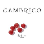Wine Cambrico Rufete 2004 1.5L owc