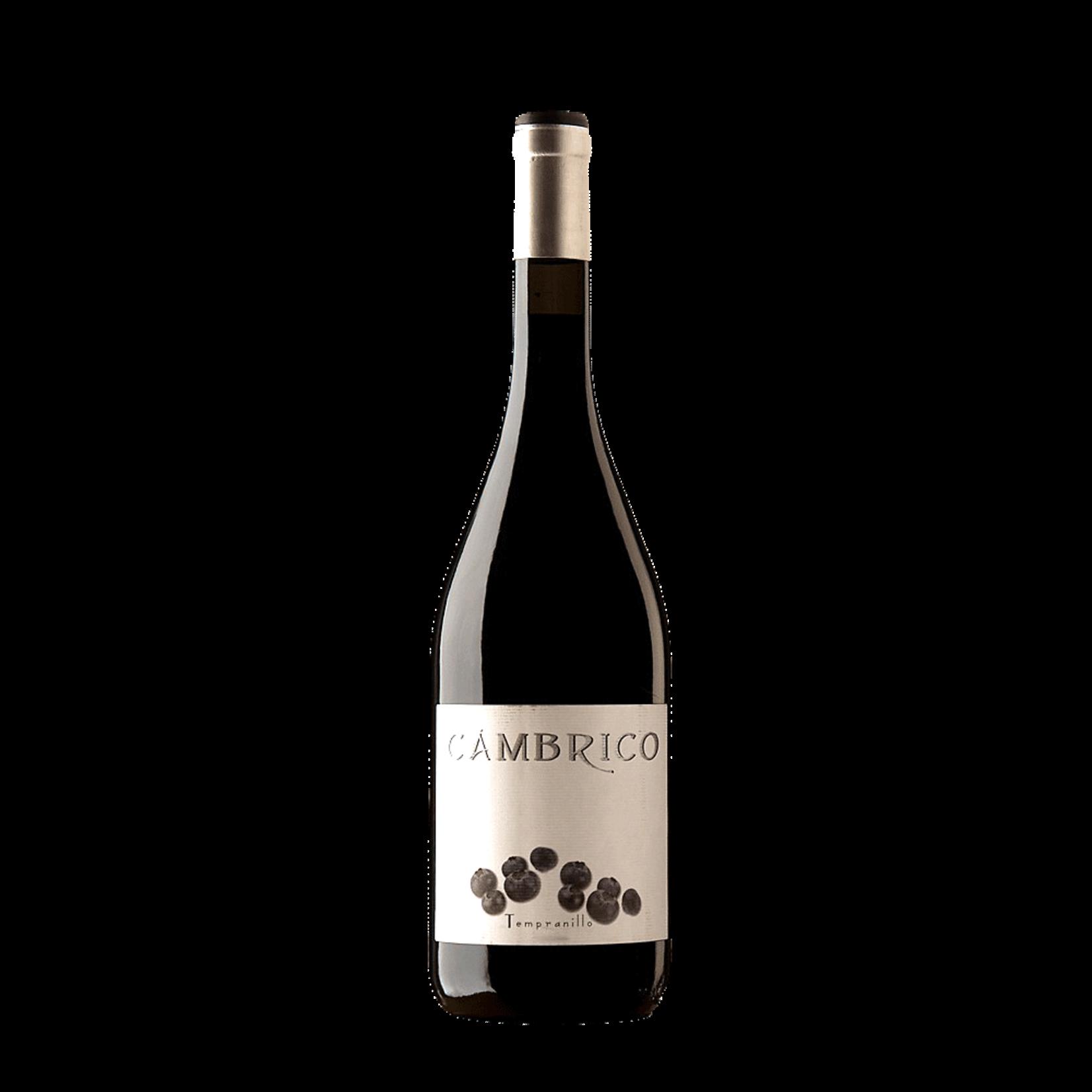 Wine Cambrico Tempranillo 2004 1.5L owc