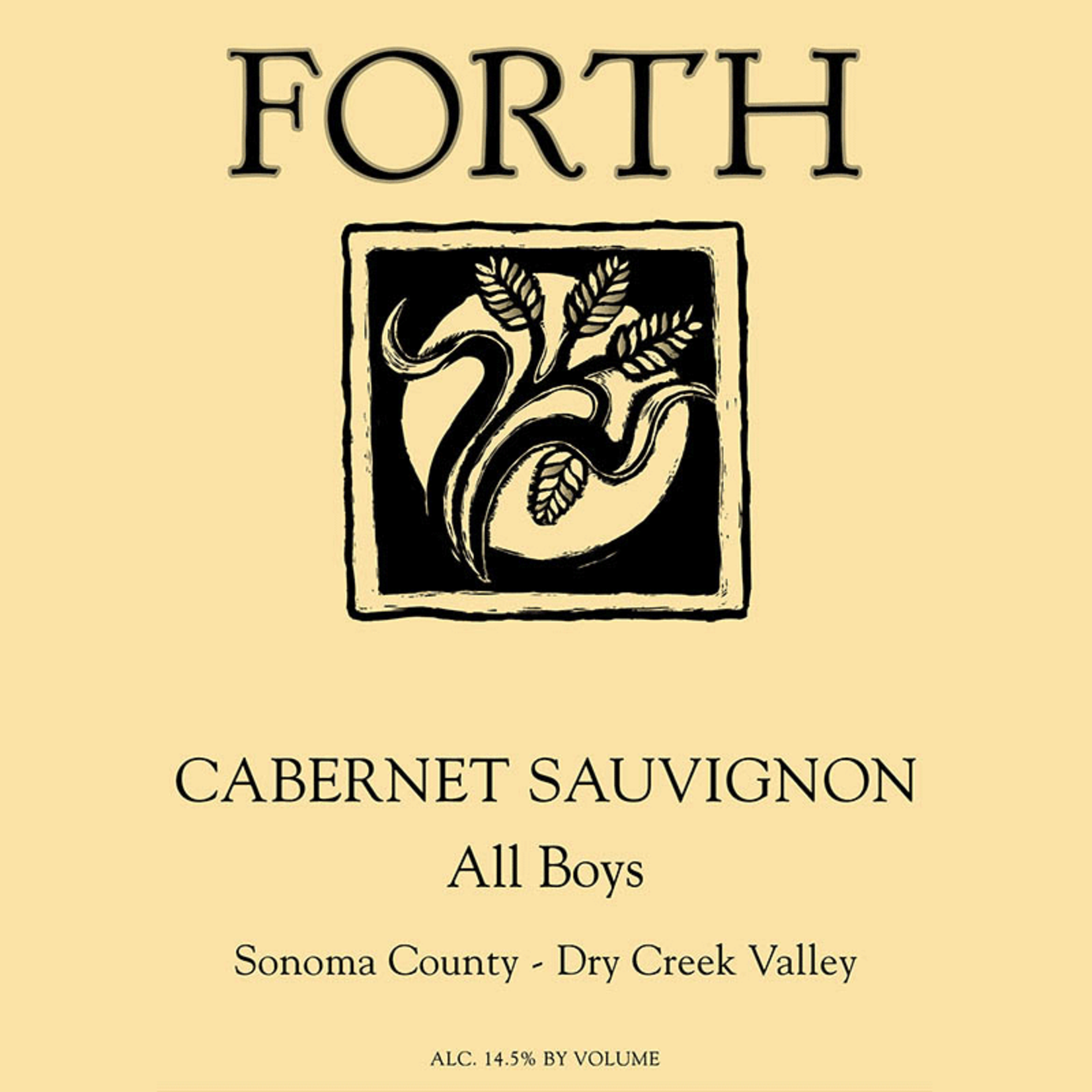 Wine Forth All Boys Cabernet Sauvignon 2018