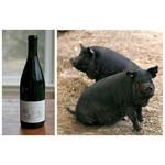 Wine Big Table Farm Pinot Noir Willamette Valley 2019