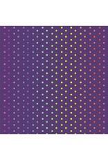 Tula Pink Tula's True Colors, Hexy Rainbow in Starling, Fabric Half-Yards PWTP151