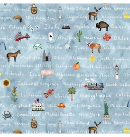 Michael Miller Coast to Coast, Cross Country in Blue, Fabric Half-Yards DDC9806