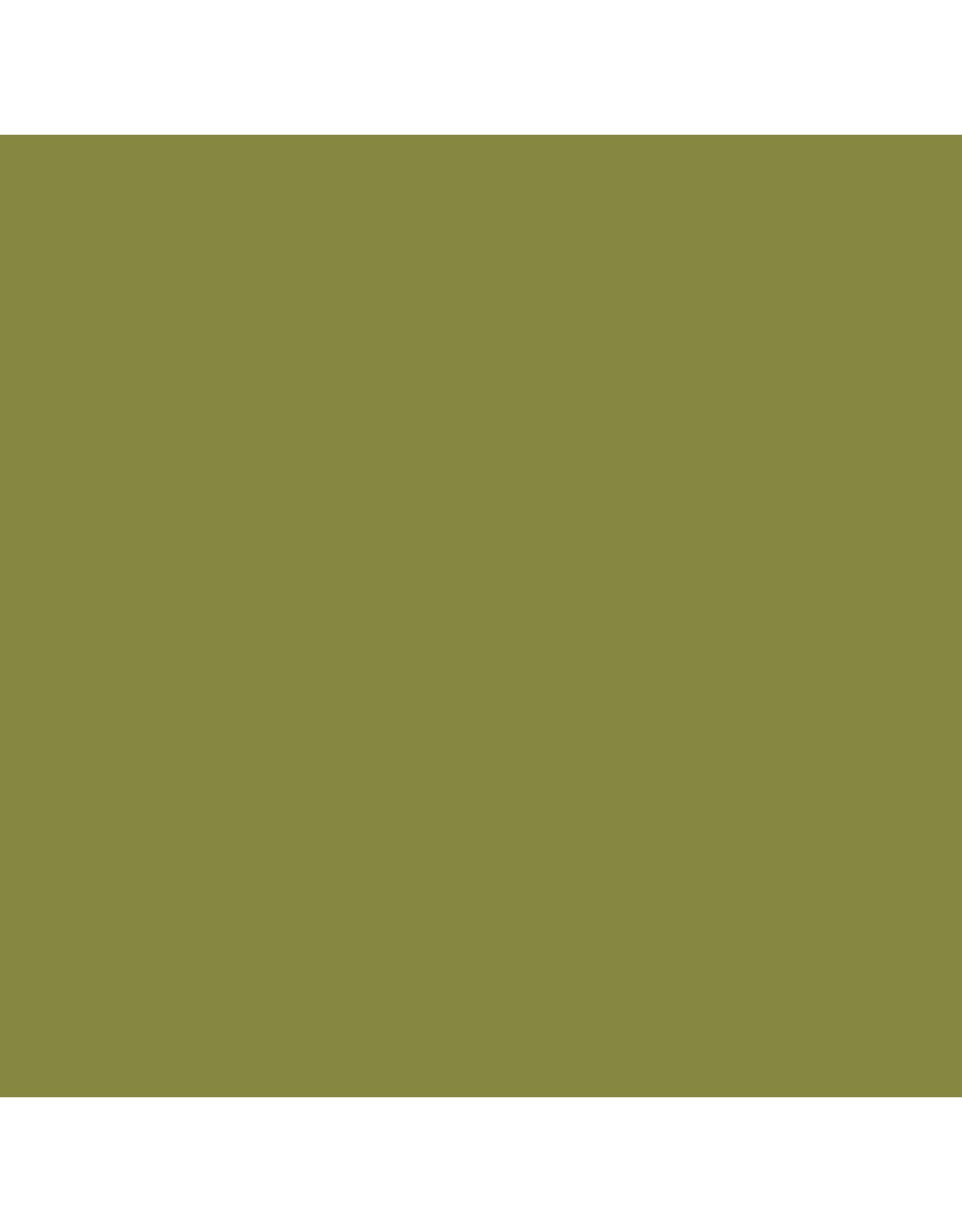 Andover Fabrics Century Solids, Jalapeno, Fabric Half-Yards