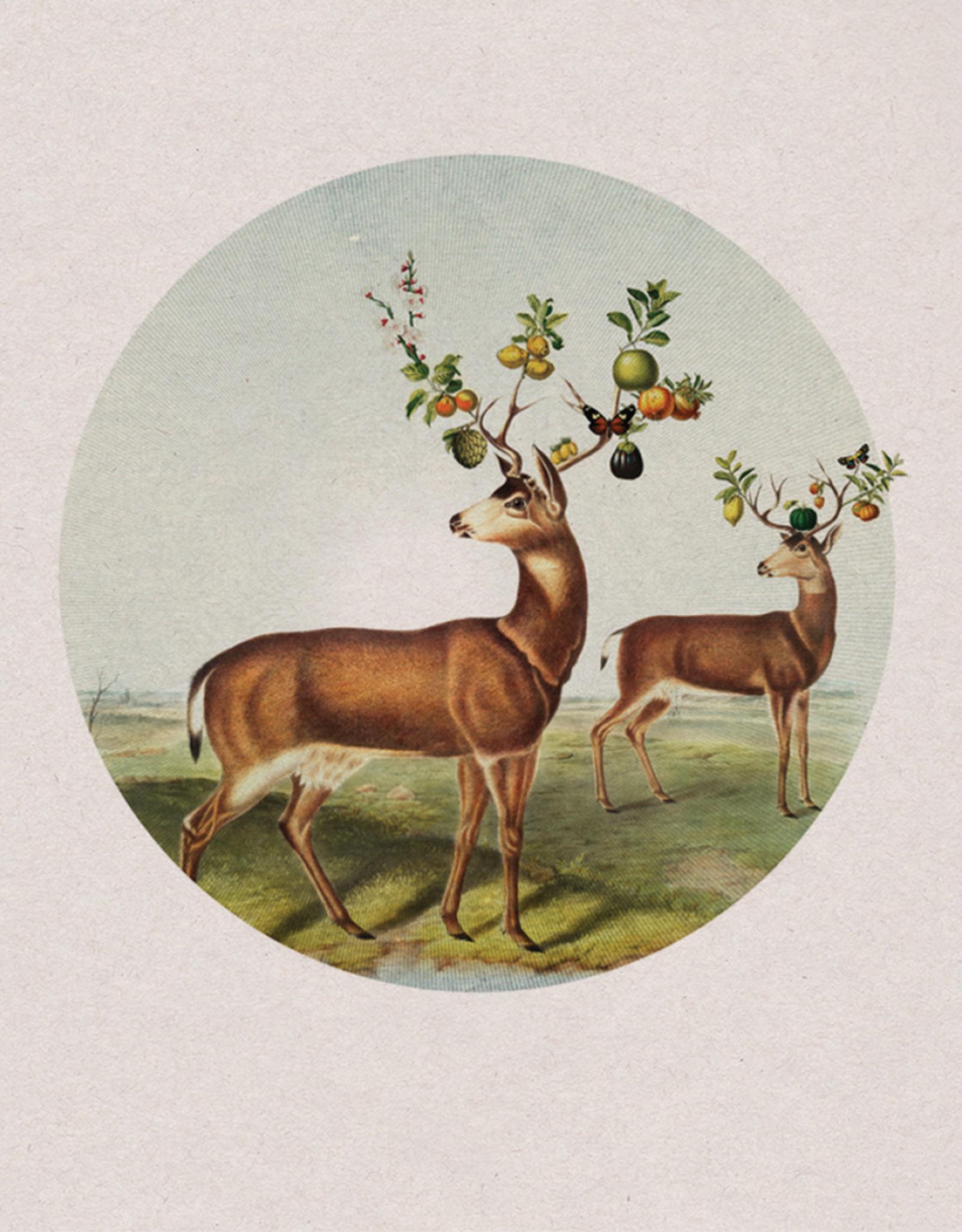 """Print - """"Horns Of Plenty"""""""