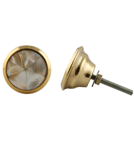 New Round Brass Knob - Natural Shell