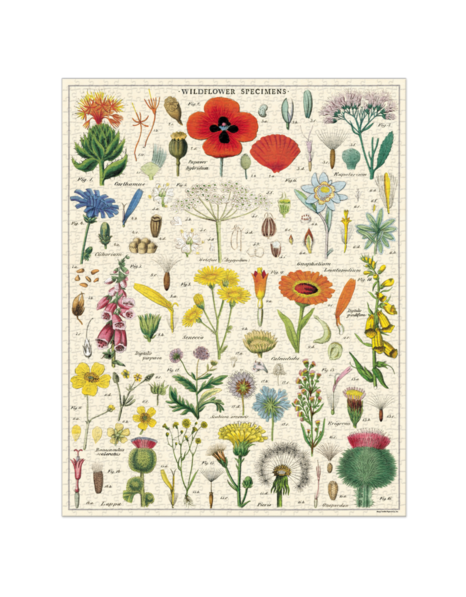 Vintage Inspired Puzzle - Wildflowers