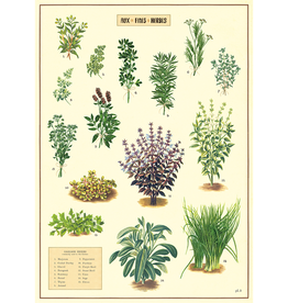 New Poster - Kitchen Herbs