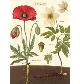 New Poster - Botany