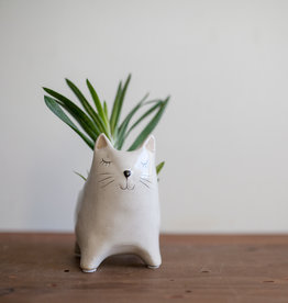 New Little Kitty Pot