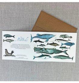 Card - Sea Mammals