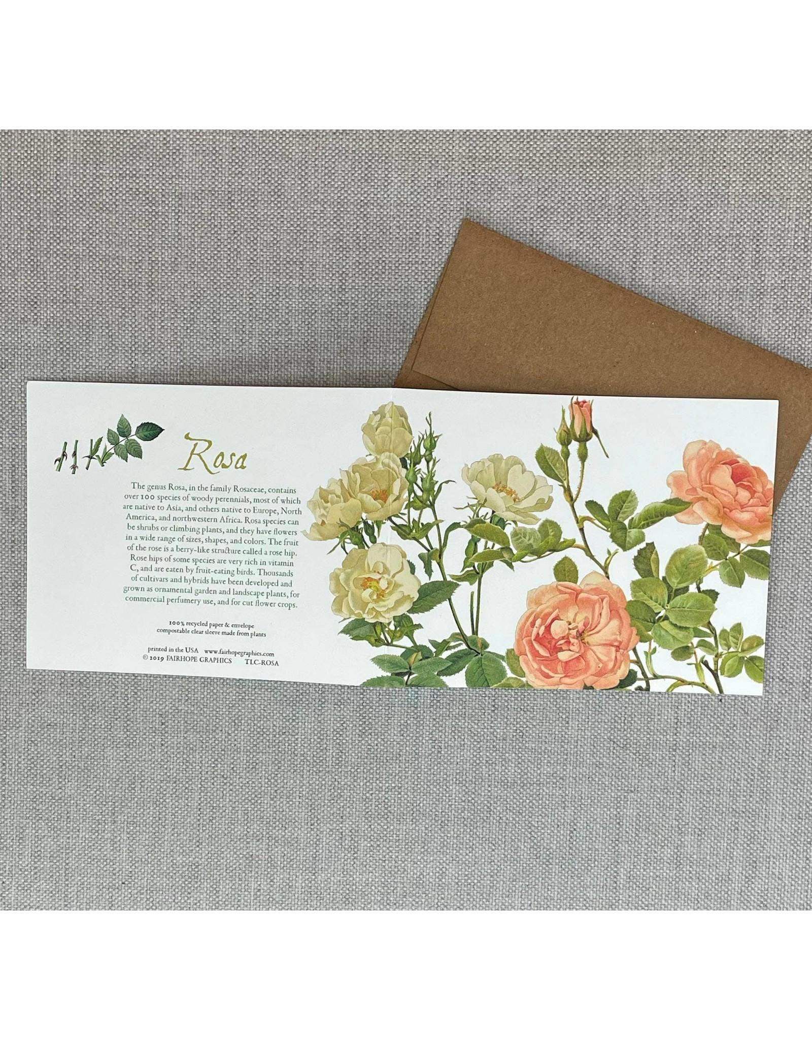 Card - Rosa