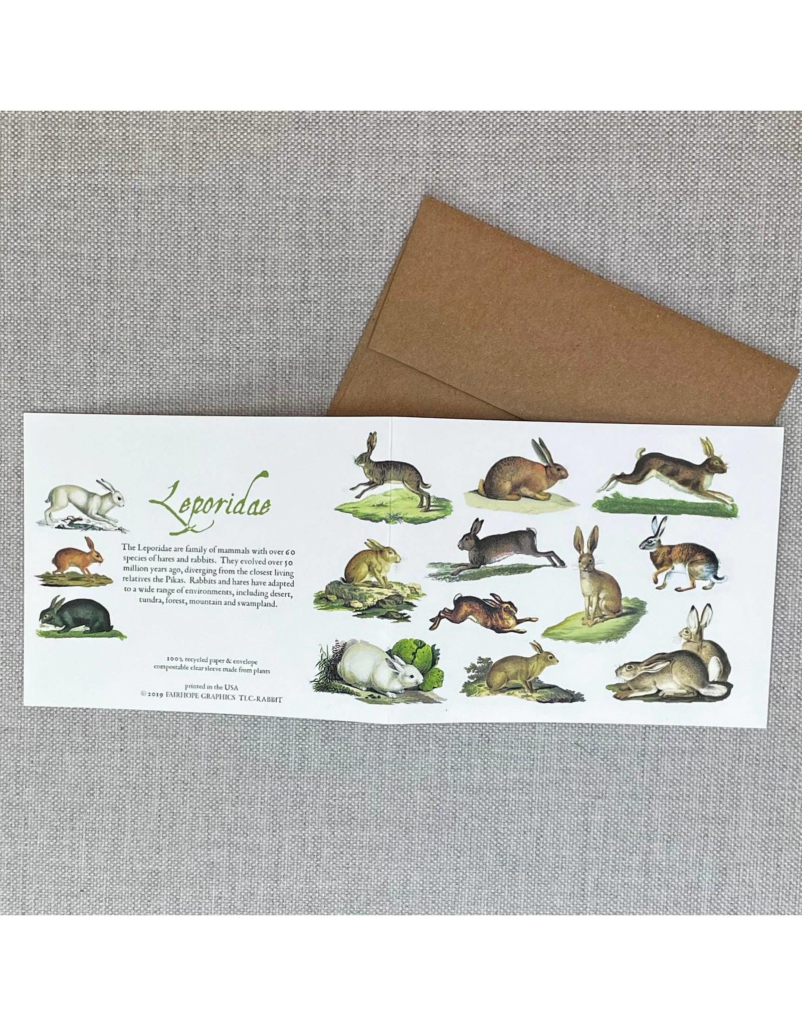 Card - Rabbit