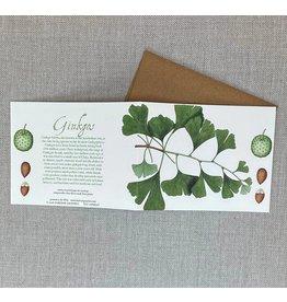 Card - Gingko