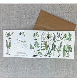 Card - Ferns
