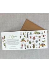 Card - Beetles