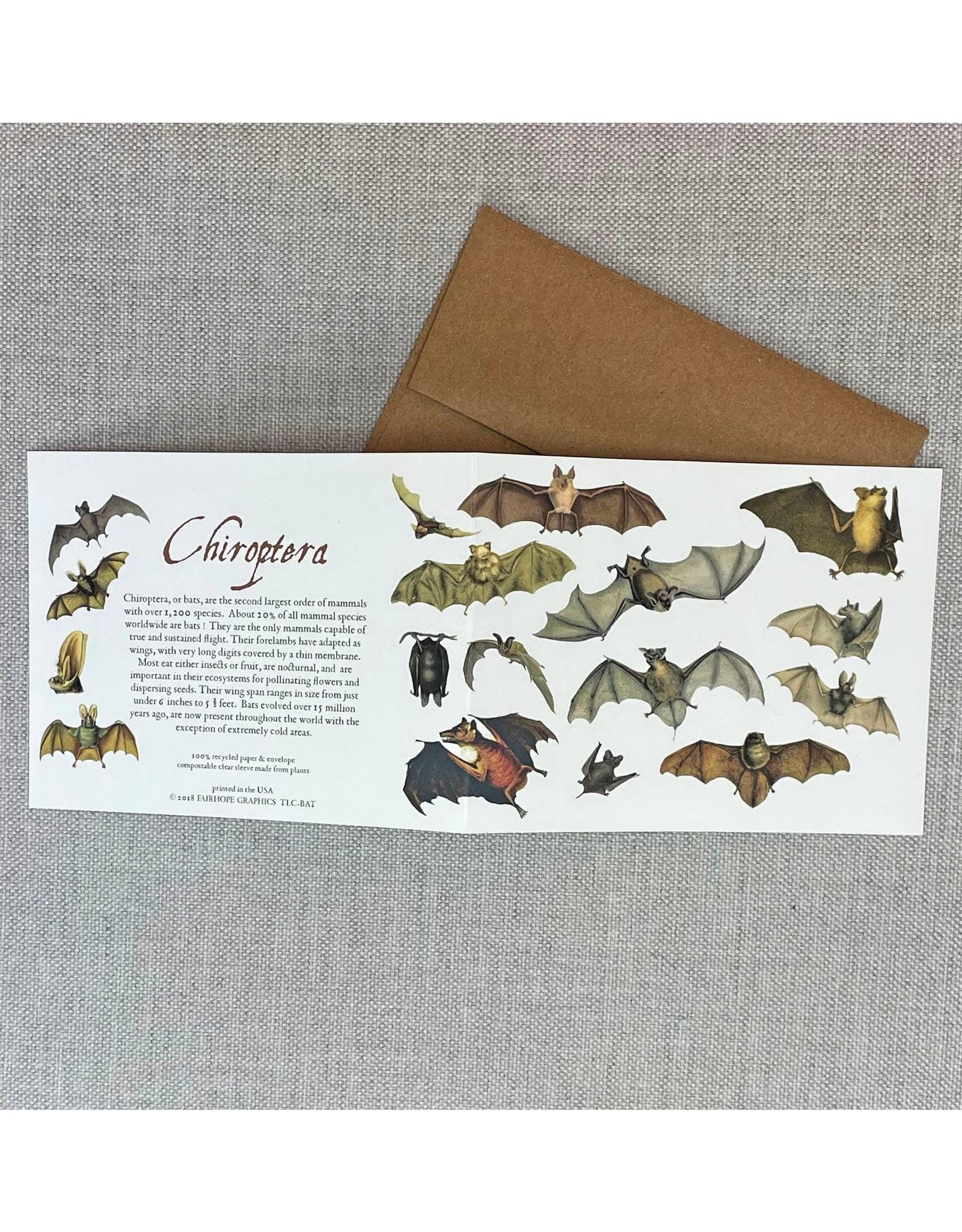 Card - Bats