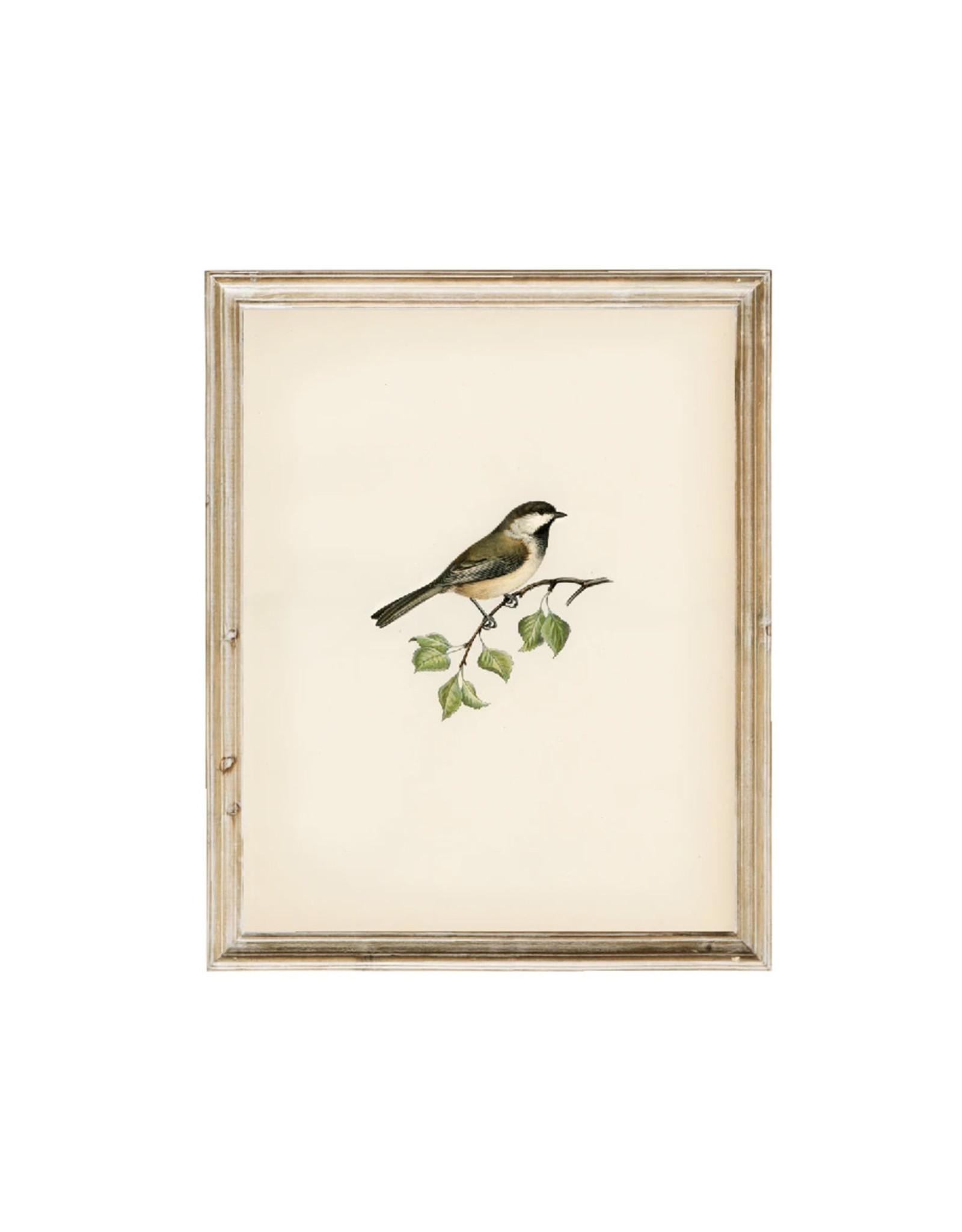 Vintage Print - Bird