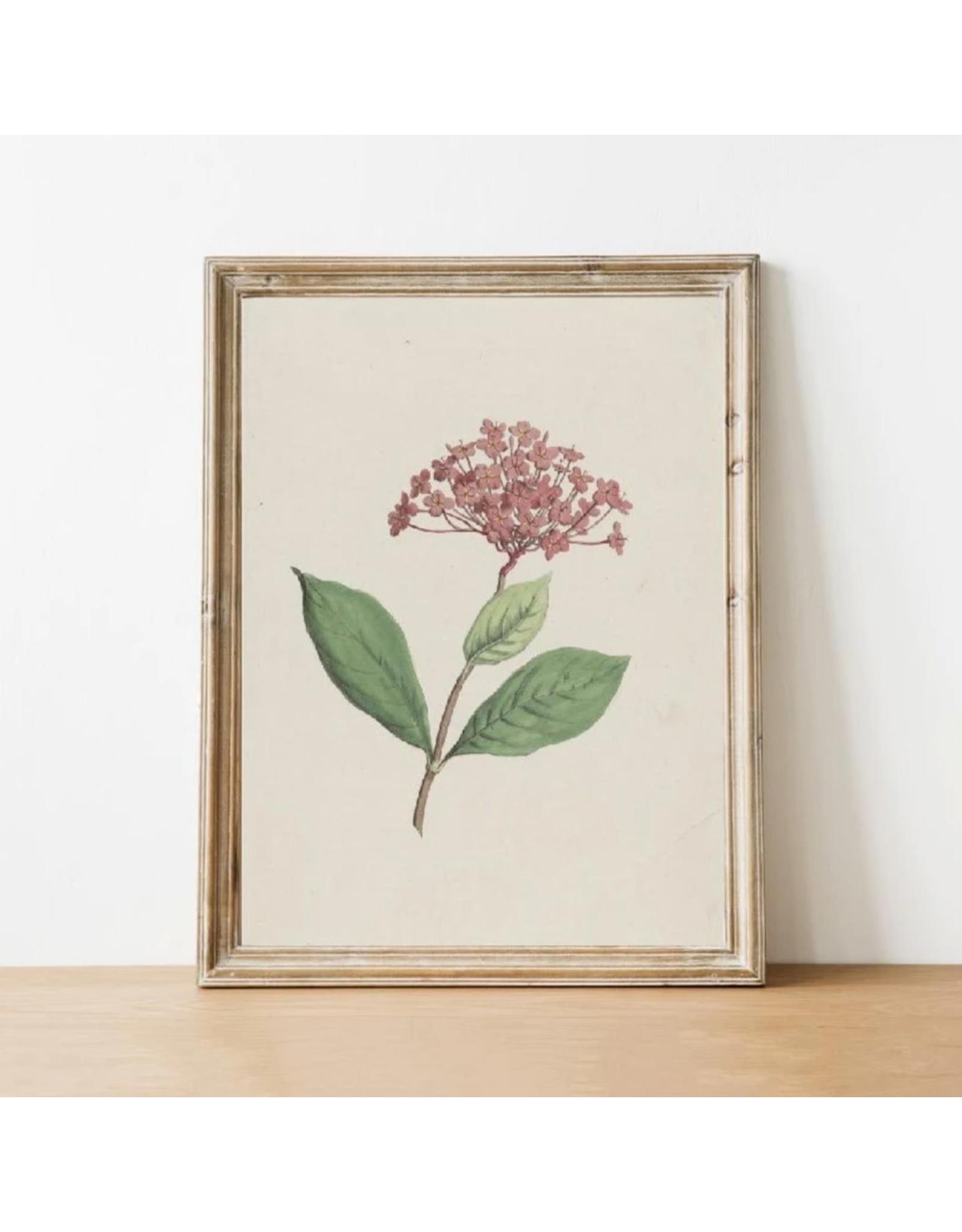 Vintage Print - Flower