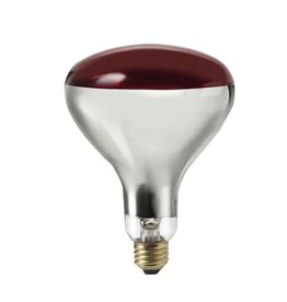 Canarm Canarm R40 250W Heat Lamp Bulb