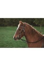 Western Rawhide Plain Pony Headstall W/ Reins Chestnut