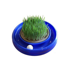 Coastal Pet Products Grass For Turbo Scratcher & Star Chaser