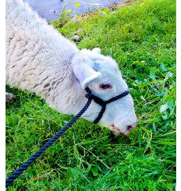 Adjustable Sheep Rope Halter