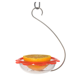 Droll Yankee DYBOHM Hanging Oriole Feeder plastic dish on curved wire