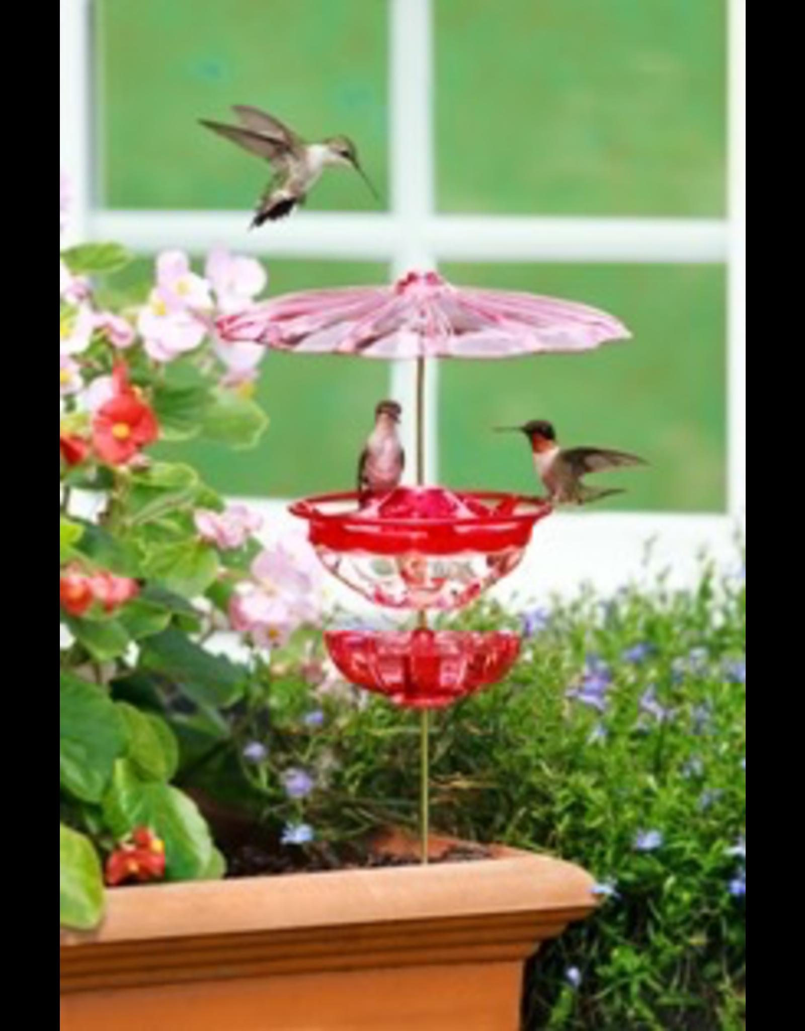Aspects ASP436 Hummingbird feeder accessory kit