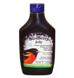 Songbird Essentials SE6010 Grape Jelly for Orioles
