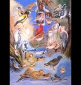 Wildbird Trading YHPAP Poster