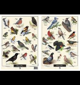 Wildbird Trading WFPOS1000E Poster