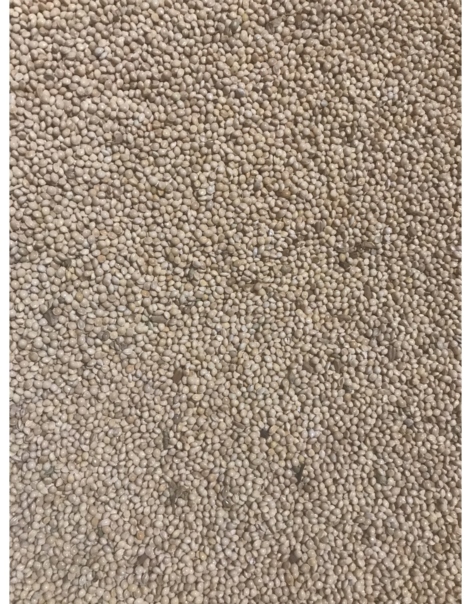 Mill Creek/Seed WMILLET7 7lb bag of white/yellow millet