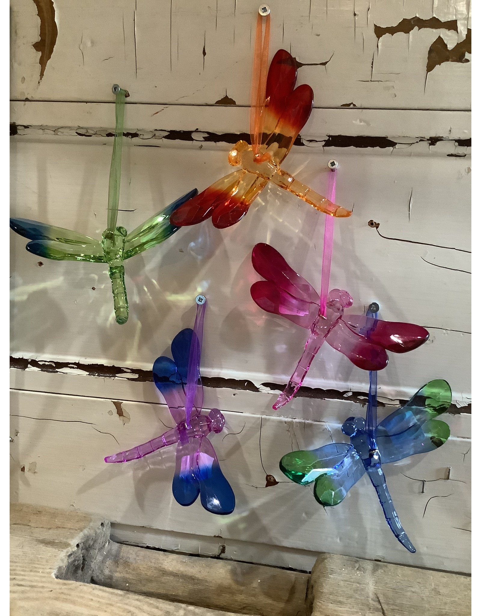 FRANS KOPPER FK803 Acrylic Dragonfly Suncatcher, Assort Colours