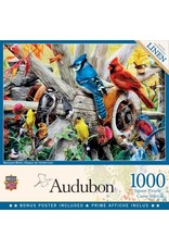 Masterpieces BF31978 1000pc puzzle Backyard Birds