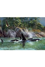 Cobble Hill Puzzles OM80249 Cobblehill Puzzle 1000pc Orcas