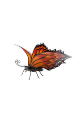 EE3286 Hand-painted Orange Metal Monarch Butterfly