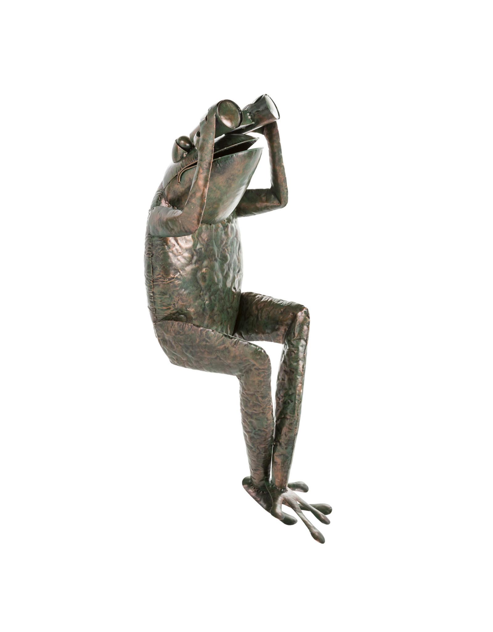 EE3287 Handcrafted Metal Frog with Binoculars