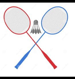 Sport Design 2 Player Badminton Set