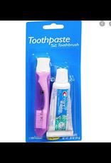 Toothpaste plus Toothbrush