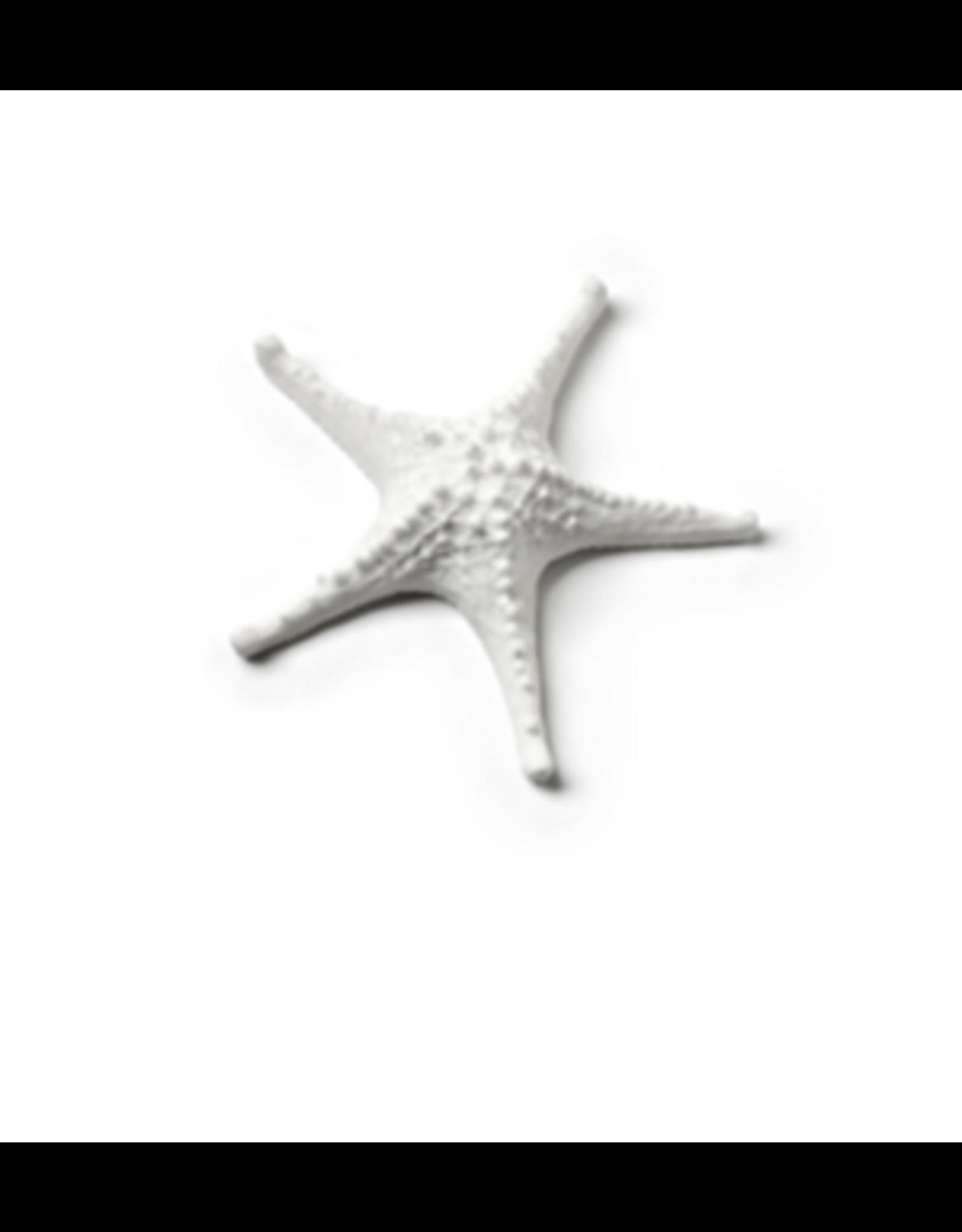 Abbott Mini 3D Starfish White
