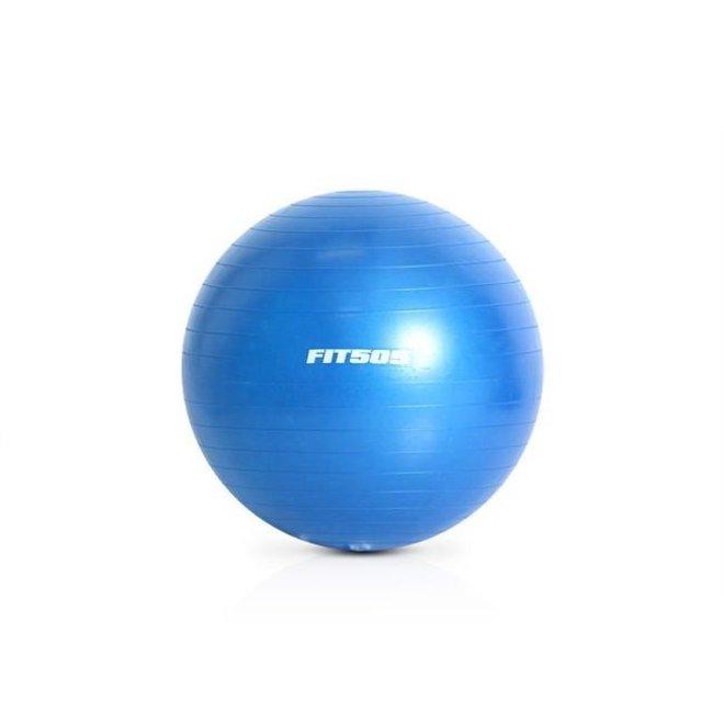 FIT505 65cm Anti Burst Stability Ball (Blue)
